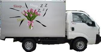 bunga hias
